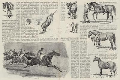 The Career of a Racehorse-John Charlton-Giclee Print