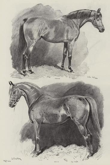 The Career of a Recehorse-John Charlton-Giclee Print