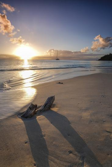 The Caribbean Sunset Frames the Remains of Tree Trunks on Ffryes Beach, Antigua-Roberto Moiola-Photographic Print