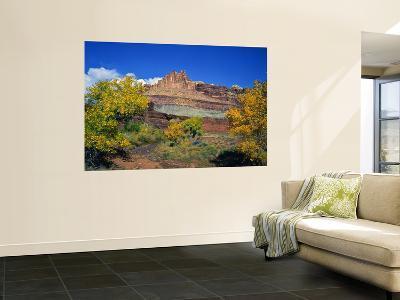 The Castle Along the Fremont River, Capitol Reef National Park, Utah, USA-Bernard Friel-Wall Mural