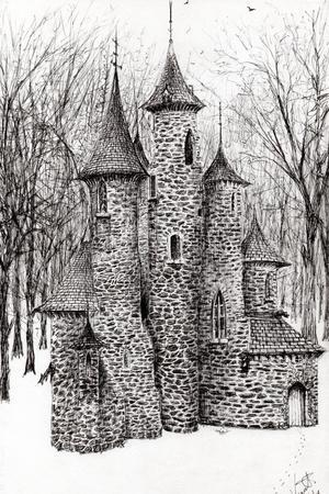 https://imgc.artprintimages.com/img/print/the-castle-in-the-forest-of-findhorn-2008_u-l-pw5hyv0.jpg?p=0