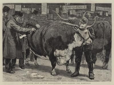 https://imgc.artprintimages.com/img/print/the-cattle-show-at-the-agricultural-hall-judging-the-herefords_u-l-puvzdn0.jpg?p=0