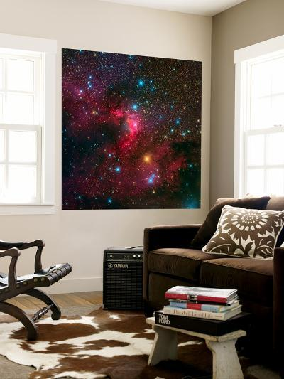 The Cave Nebula-Stocktrek Images-Wall Mural