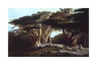 https://imgc.artprintimages.com/img/print/the-cedars-of-lebanon_u-l-pseib60.jpg?p=0