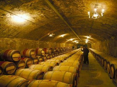 The Cellars, Chateau Lafitte Rothschild, Pauillac, Gironde, France-Michael Busselle-Photographic Print