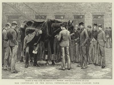 The Centenary of the Royal Veterinary College, Camden Town--Giclee Print