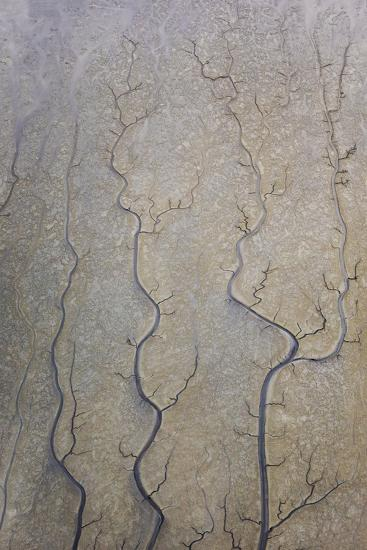 The Channels Of Tide Lines Exposed At Low Tide Along The Cook Inlet Near Anchorage Alaska-Jay Goodrich-Photographic Print