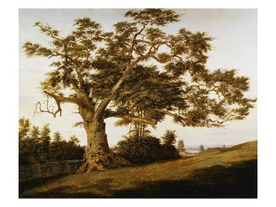 The Charter Oak-Charles de Wolfe Brownell-Giclee Print