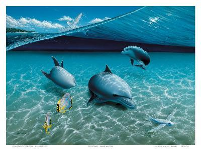 The Chase, Hawaiian Spinner Dolphins-Mark Mackay-Art Print