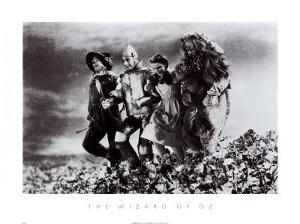 The Wizard of Oz by The Chelsea Collection