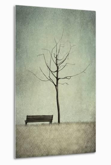 The Cherry Tree - Winter-Majali-Metal Print