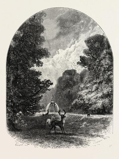 The Chestnuts and Deer in Bushey Park, UK--Giclee Print