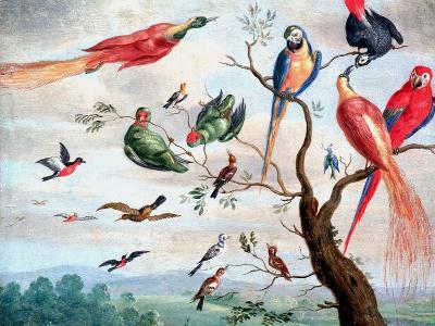 The Chorus of Birds, C.1650-1675-Jan Thomasz. van Kessel-Giclee Print