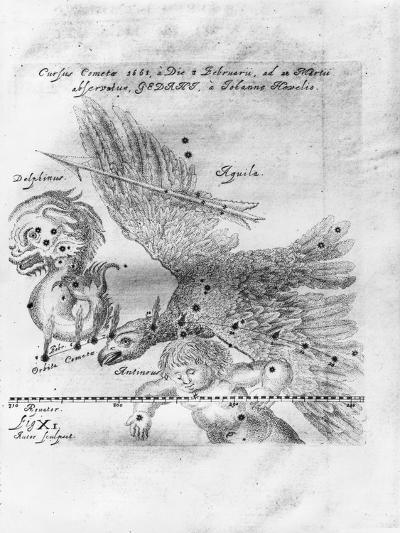 The Comet Discovered and Observed by Johannes Hevelius, 3rd February to 28th March 1661-Johann Hevelius-Giclee Print
