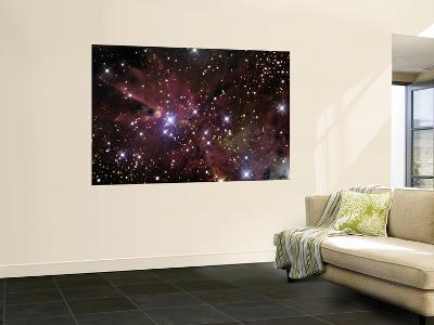 The Cone Nebula and Christmas Tree Cluster--Giant Art Print
