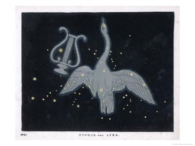 The Constellation of Cygnus, a Flying Swan, and Lyra, That of an Ancient Greek Lyre-Charles F^ Bunt-Giclee Print