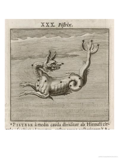 The Constellation of Pistrix the Sea Monster-Gaius Julius Hyginus-Giclee Print