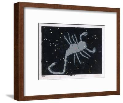 The Constellation of Scorpio, the Scorpion