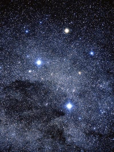 The Constellation of the Southern Cross-Luke Dodd-Photographic Print