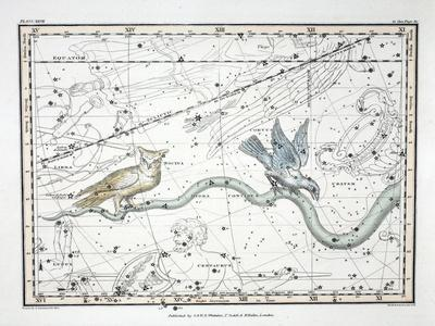 https://imgc.artprintimages.com/img/print/the-constellations_u-l-pp5mg20.jpg?p=0