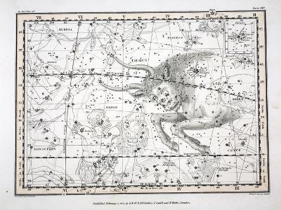 The Constellations-Alexander Jamieson-Giclee Print