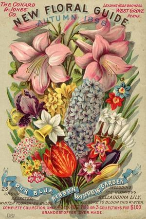 The Conyard and Jones' Co. New Floral Guide, Autumn 1898