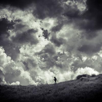 The Cosmos-Svante Oldenburg-Photographic Print