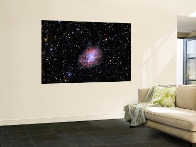 The Crab Nebula--Giant Art Print