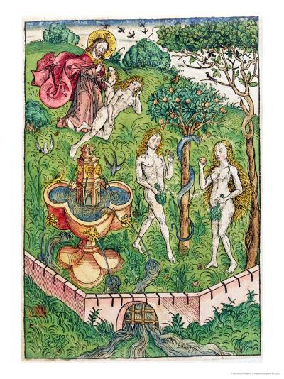 The Creation and the Temptation of Adam and Eve, c.1491-Michael Wolgemut Or Wolgemuth-Giclee Print