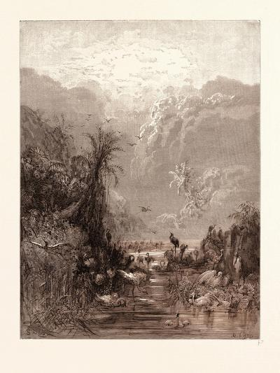 The Creation of Birds-Gustave Dore-Giclee Print