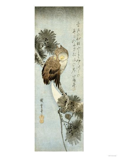 The Crescent Moon and Owl Perched on Pine Branches, Chu-Tanzaku-Kishi Chikudo-Giclee Print