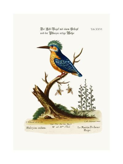 The Crested Kingfisher, 1749-73-George Edwards-Giclee Print