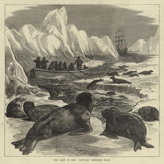 The Crew of the Pandora Shooting Seals--Giclee Print