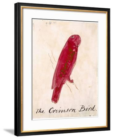 The Crimson Bird, from Sixteen Drawings of Comic Birds-Edward Lear-Framed Giclee Print