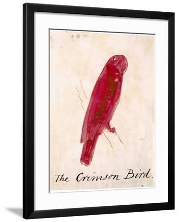 The Crimson Bird, from Sixteen Drawings of Comic Birds-Edward Lear-Framed Giclee Print