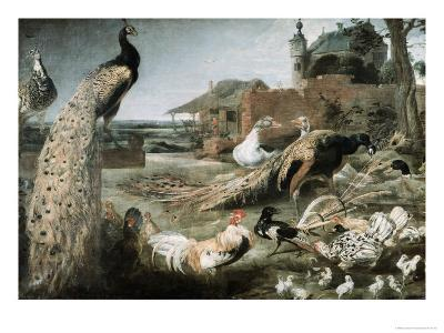 The Crow in Peacock Feathers-Frans Snyders-Giclee Print