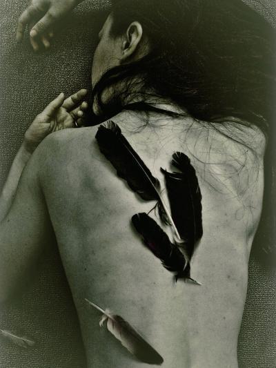 The Crow-Anita Libera Corsi-Photographic Print