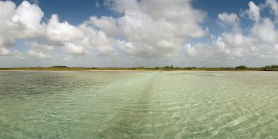 The Crystal Clear Water of an Ancient Maya Canal in Sian Ka'An Biosphere Reserve-Macduff Everton-Photographic Print