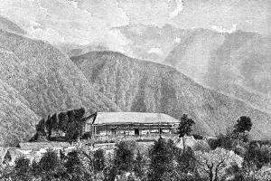 The Cussillani Hacienda, Yungas, Bolivia, 1895