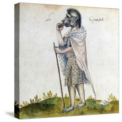 The Cynoscephalus, 15th Century