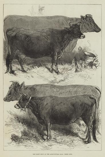 The Dairy Show at the Agricultural Hall, Prize Cows-Harrison William Weir-Giclee Print