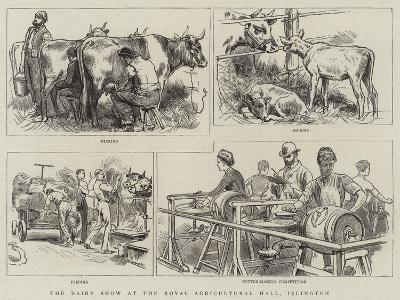 The Dairy Show at the Royal Agricultural Hall, Islington--Giclee Print