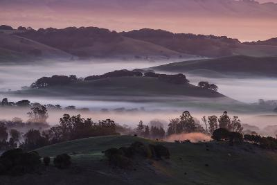 The Day Begins in the Petaluma Hills, Sonoma County-Vincent James-Photographic Print