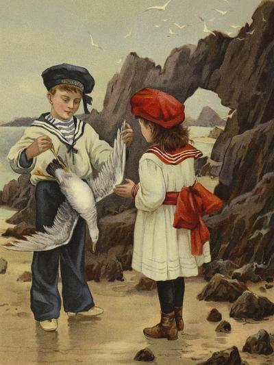 The Dead Sea-Gull--Giclee Print