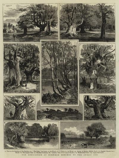 The Dedication of Burnham Beeches to the Public Use--Giclee Print