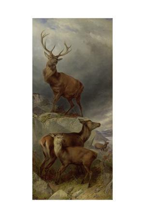 The Deer Forest-Richard Ansdell-Giclee Print