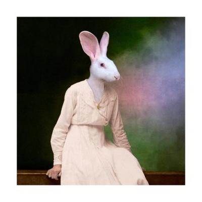 https://imgc.artprintimages.com/img/print/the-delicate-lady_u-l-q1gud8k0.jpg?p=0
