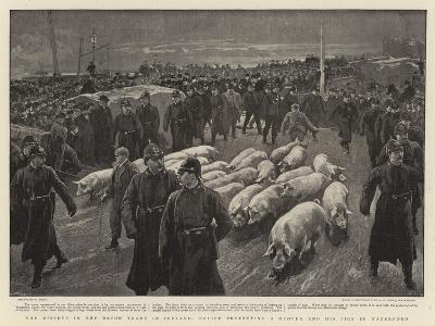 The Dispute in the Bacon Trade in Ireland, Police Protecting a Drover and His Pigs in Waterford-William Small-Giclee Print