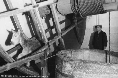 The Donkey in the Wheel, Carisbrooke Castle, Near Newport, Isle of Wight, 20th Century--Photographic Print