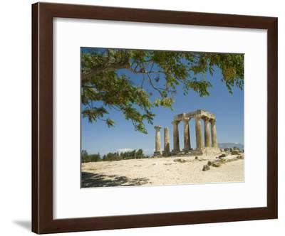 The Doric-Style 550 Bc Temple of Apollo and a Branch of an Olive Tree-Richard Nowitz-Framed Photographic Print